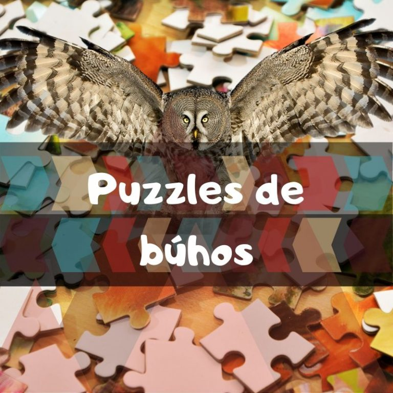 Lee más sobre el artículo Los mejores puzzles de búhos