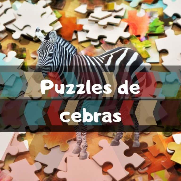 Lee más sobre el artículo Los mejores puzzles de cebras