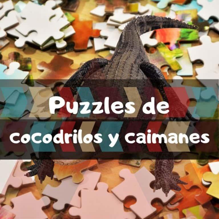 Lee más sobre el artículo Los mejores puzzles de cocodrilos y caimanes