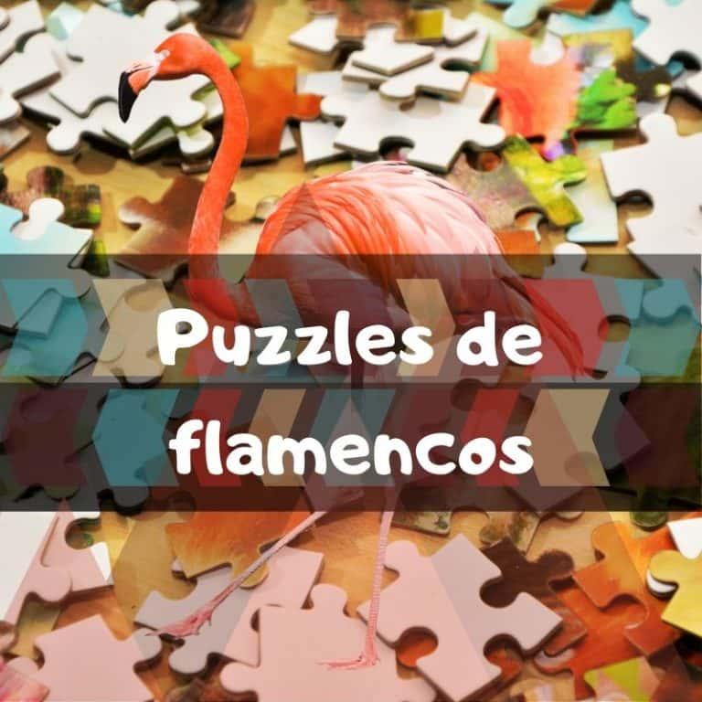 Lee más sobre el artículo Los mejores puzzles de flamencos
