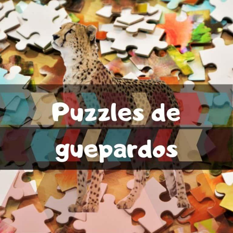 Lee más sobre el artículo Los mejores puzzles de guepardos