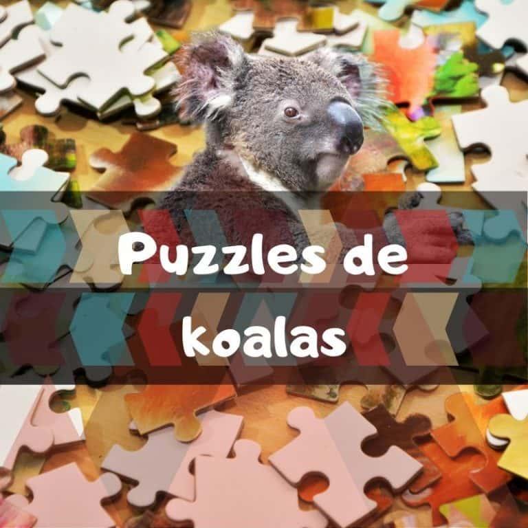 Lee más sobre el artículo Los mejores puzzles de koalas