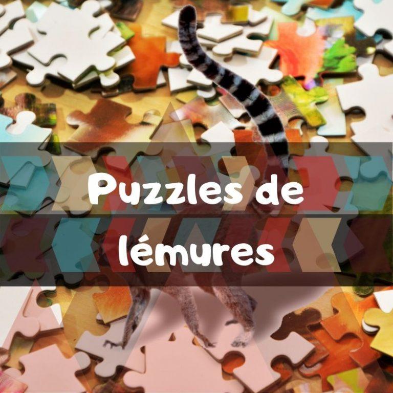 Lee más sobre el artículo Los mejores puzzles de lémures