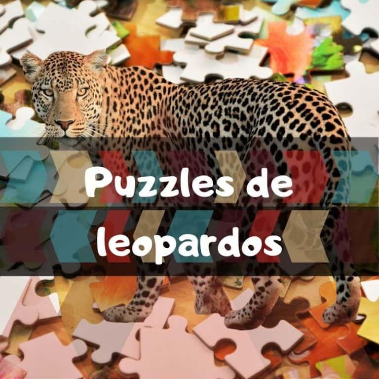 Los mejores puzzles de leopardos
