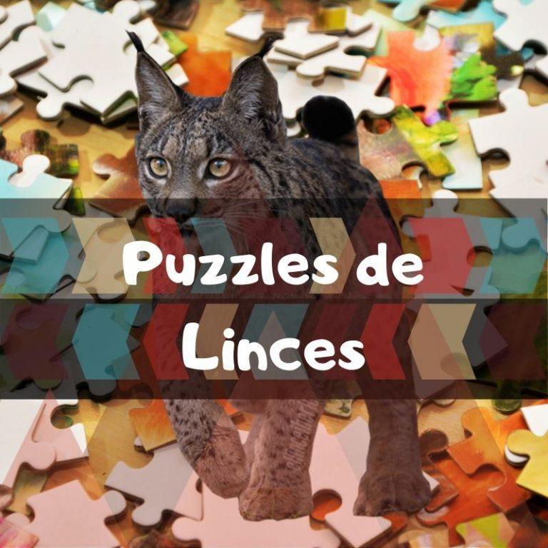 Lee más sobre el artículo Los mejores puzzles de linces