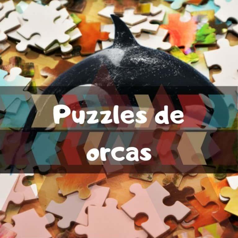 Lee más sobre el artículo Los mejores puzzles de orcas
