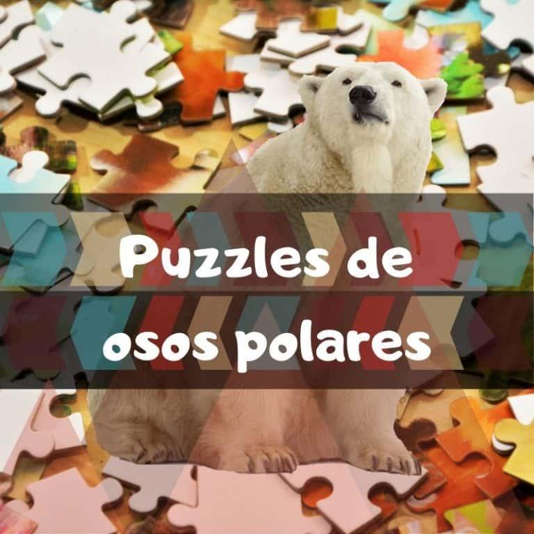 Los mejores puzzles de osos polares