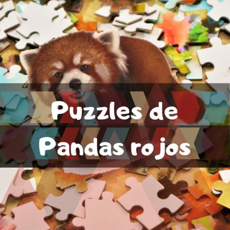 Lee más sobre el artículo Los mejores puzzles de pandas rojos