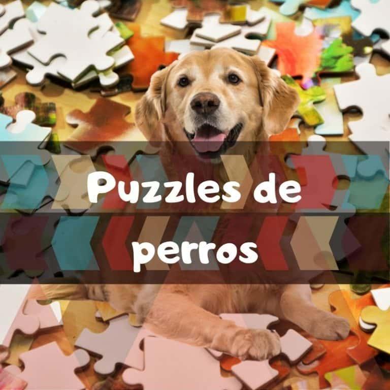 Los mejores puzzles de perros