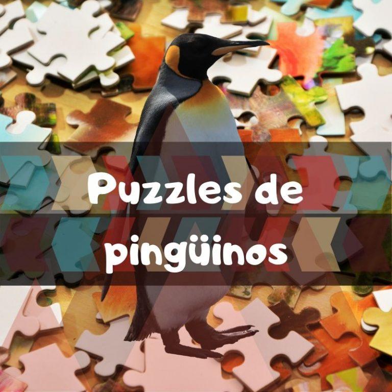 Lee más sobre el artículo Los mejores puzzles de pingüinos