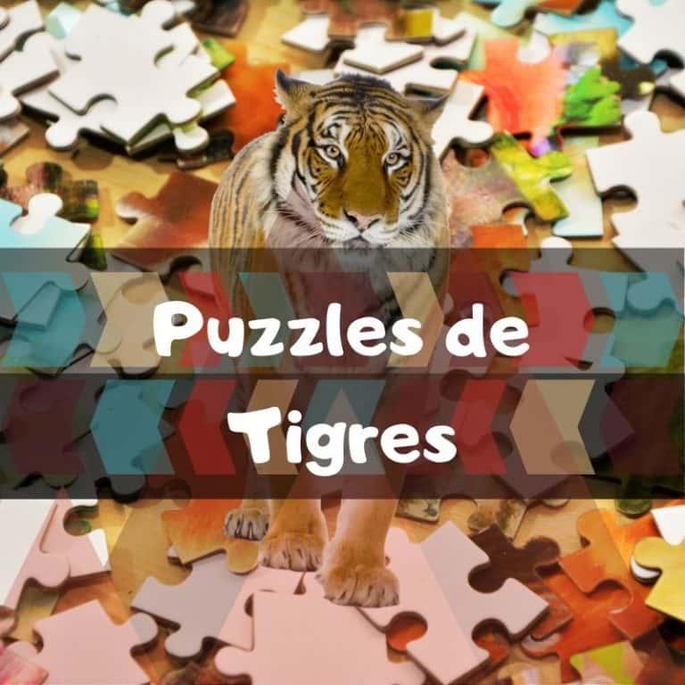 Lee más sobre el artículo Los mejores puzzles de tigres