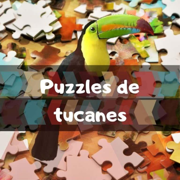 Lee más sobre el artículo Los mejores puzzles de tucanes