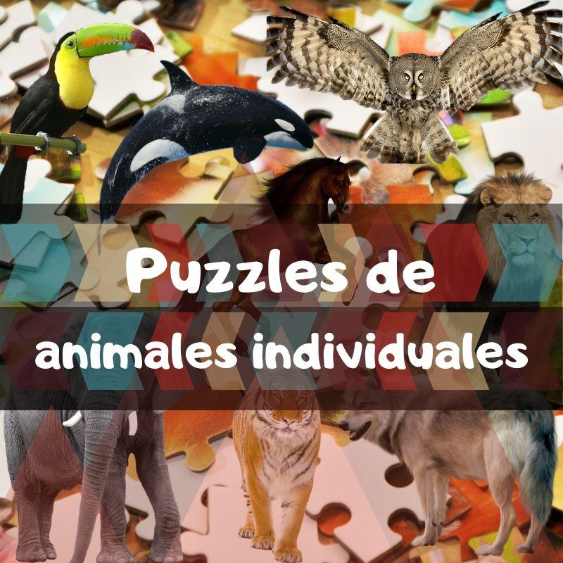 Puzzles de animales individuales - Puzzles de animales únicos