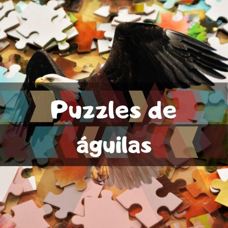 Lee más sobre el artículo Los mejores puzzles de águilas