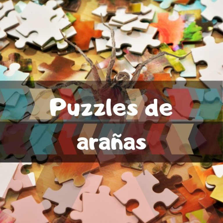 Los mejores puzzles de arañas