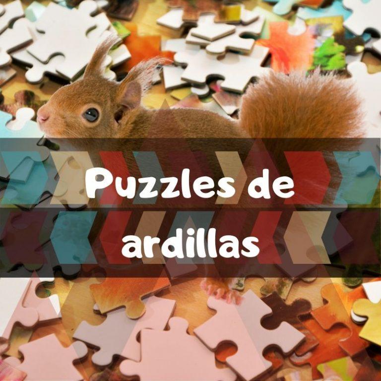 Los mejores puzzles de ardillas