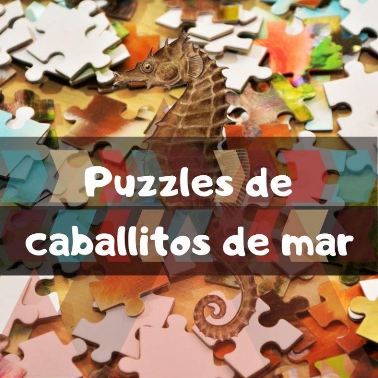 Los mejores puzzles de caballitos de mar