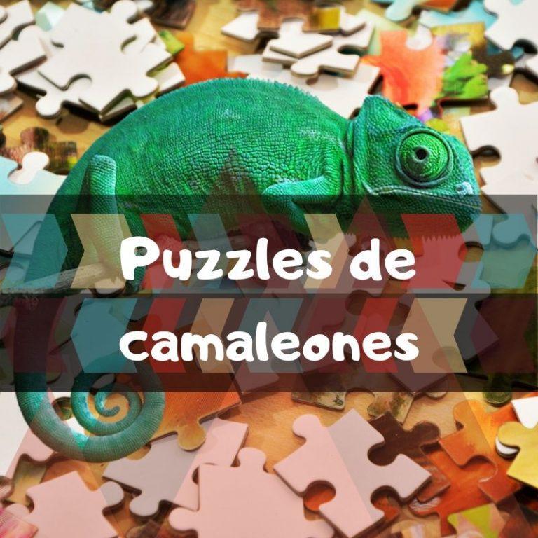 Los mejores puzzles de camaleones