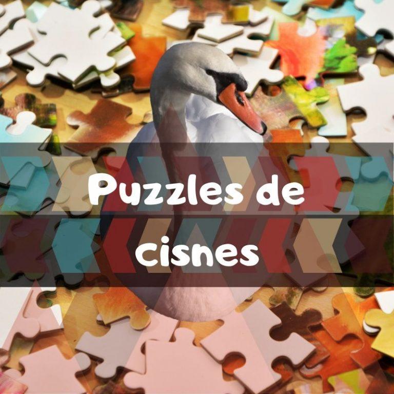 Lee más sobre el artículo Los mejores puzzles de cisnes