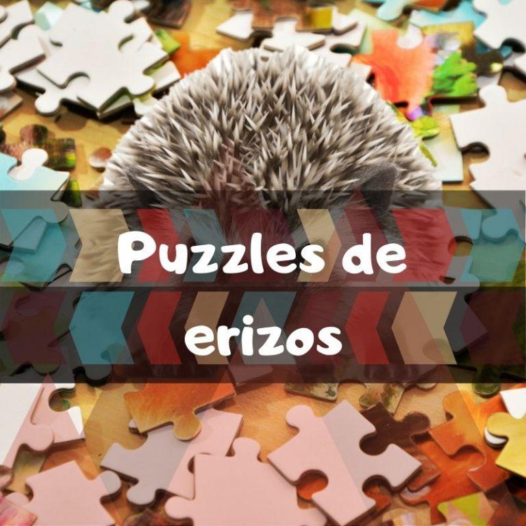 Los mejores puzzles de erizos