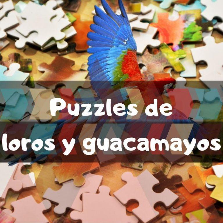 Los mejores puzzles de loros y guacamayos