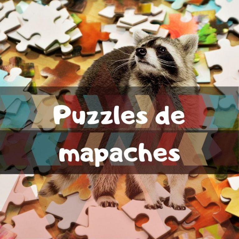 Lee más sobre el artículo Los mejores puzzles de mapaches