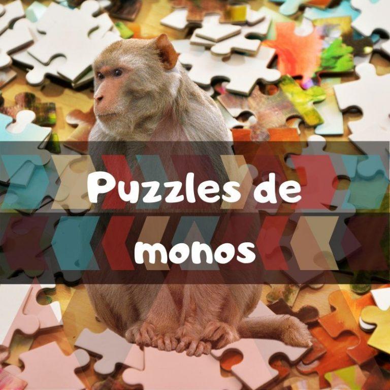 Los mejores puzzles de monos