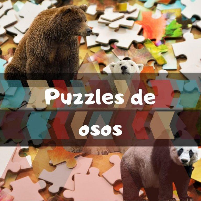 Los mejores puzzles de osos
