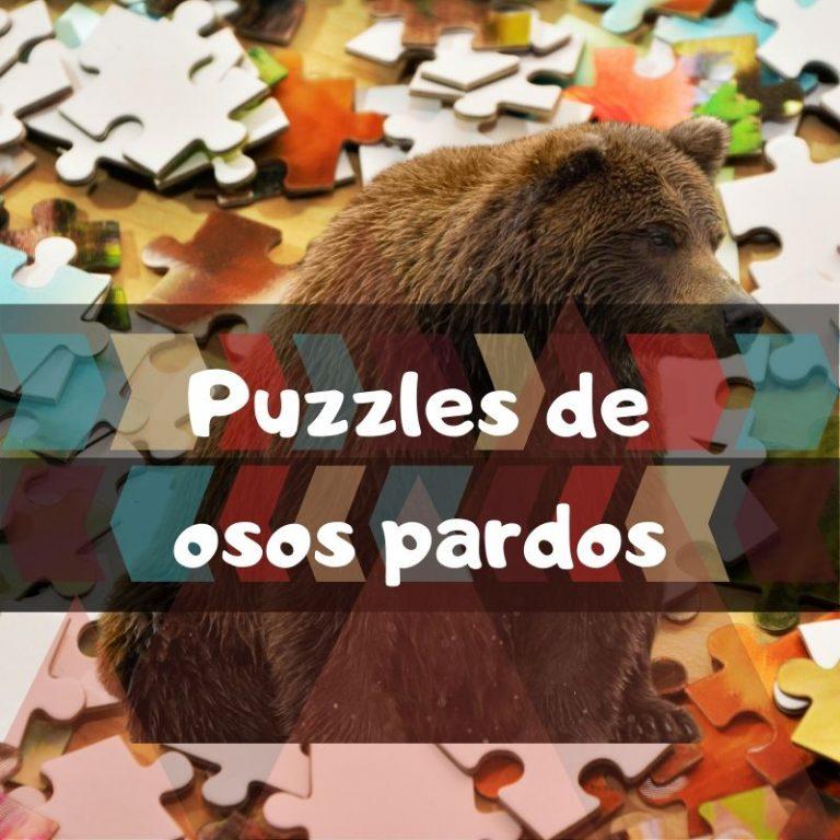 Los mejores puzzles de osos pardos