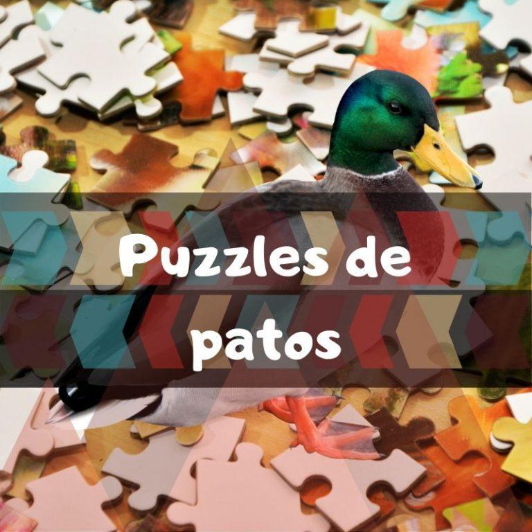 Los mejores puzzles de patos