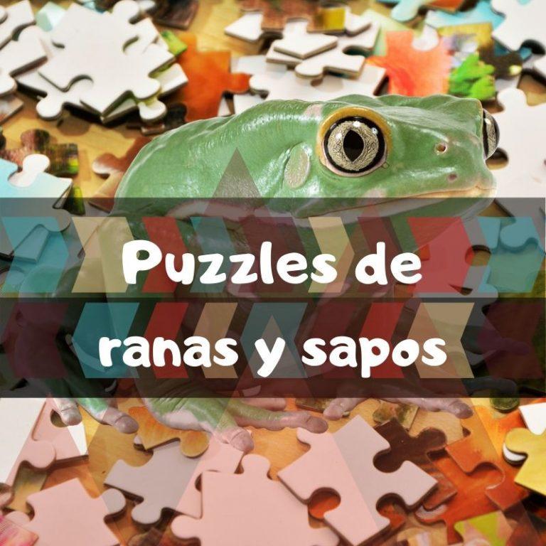 Los mejores puzzles de ranas