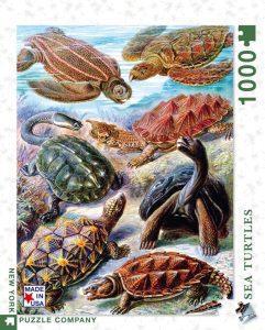 Puzzle de tipos de tortugas de 1000 piezas - Los mejores puzzles de tortugas
