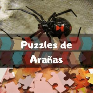 Los mejores puzzles de animales salvajes - Puzzles de arañas - Comprar puzzle de araña