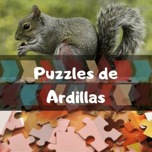 Los mejores puzzles de animales salvajes - Puzzles de ardillas - Comprar puzzle de ardilla
