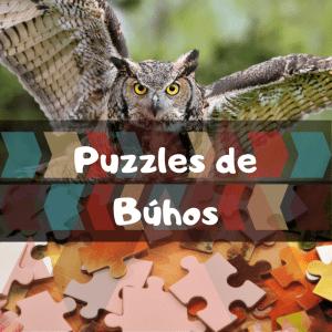 Los mejores puzzles de animales salvajes - Puzzles de búhos - Comprar puzzle de búho