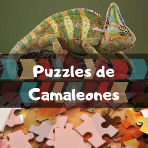Los mejores puzzles de animales salvajes - Puzzles de camaleones - Comprar puzzle de camaleón