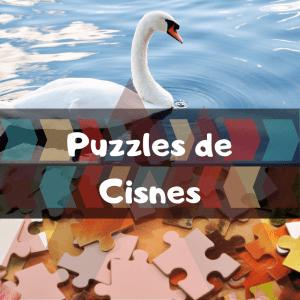 Los mejores puzzles de animales salvajes - Puzzles de cisnes - Comprar puzzle de cisne