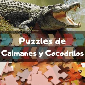Los mejores puzzles de animales salvajes - Puzzles de cocodrilos y caimanes - Comprar puzzle de cocodrilo