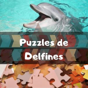 Los mejores puzzles de animales salvajes - Puzzles de delfines - Comprar puzzle de delfín