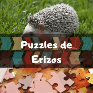 Los mejores puzzles de animales salvajes - Puzzles de erizos - Comprar puzzle de erizo