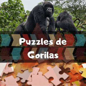 Los mejores puzzles de animales salvajes - Puzzles de gorilas - Comprar puzzle de gorila