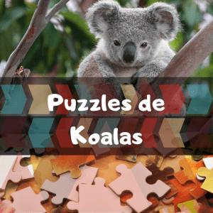 Los mejores puzzles de animales salvajes - Puzzles de koalas - Comprar puzzle de koala