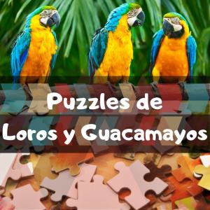 Los mejores puzzles de animales salvajes - Puzzles de loros y guacamayos - Comprar puzzle de loro