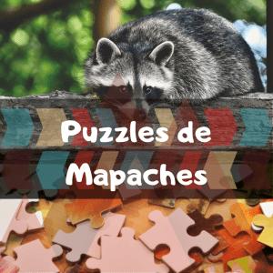Los mejores puzzles de animales salvajes - Puzzles de mapaches - Comprar puzzle de mapache