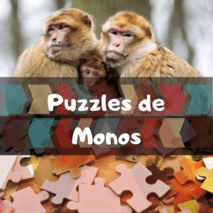 Los mejores puzzles de animales salvajes - Puzzles de monos - Comprar puzzle de mono