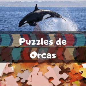 Los mejores puzzles de animales salvajes - Puzzles de orcas - Comprar puzzle de orca