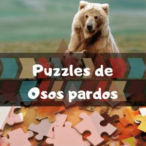 Los mejores puzzles de animales salvajes - Puzzles de osos pardos - Comprar puzzle de oso pardo
