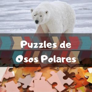 Los mejores puzzles de animales salvajes - Puzzles de osos polares - Comprar puzzle de oso polar