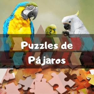 Los mejores puzzles de animales salvajes - Puzzles de pájaros - Comprar puzzle de pájaro