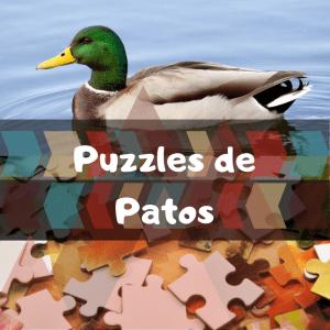 Los mejores puzzles de animales salvajes - Puzzles de patos - Comprar puzzle de pato